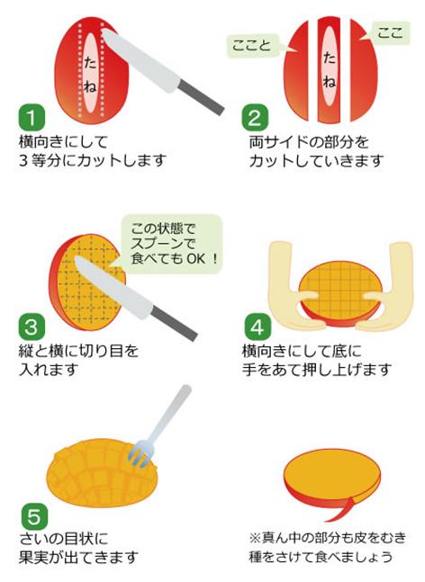 マンゴーのカット方法